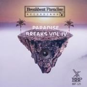 VA - Paradise Breaks Vol.4 (2016)