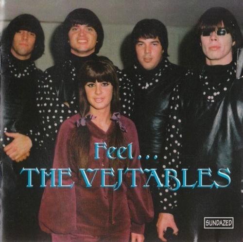 The Vejtables - Feel...The Vejtables (1965-66) (1995) Lossless
