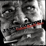 James Cotton - Cotton Mouth Man (2013) Lossless
