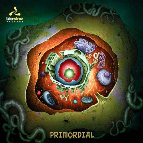 VA - Primordial