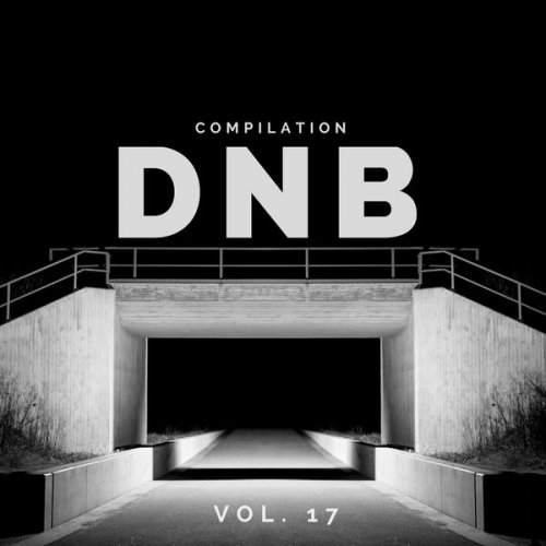 Various Artists – DnB Music Compilation, Vol. 17 (2018)