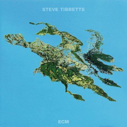 Steve Tibbetts - Big Map Idea (1989/2018) [Hi-Res]