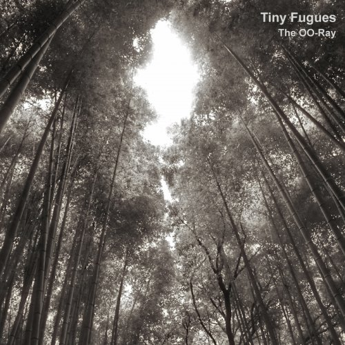 The OO-Ray - Tiny Fugues (2018)