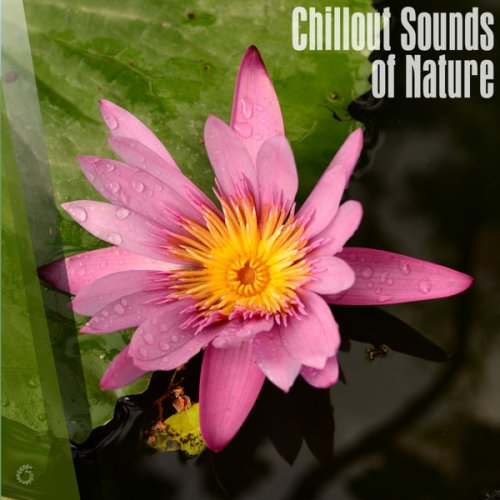 Various Artists - Chillout Sounds Of Nature (2018) FLAC