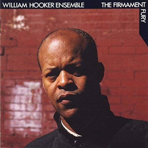 William Hooker Ensemble - The Firmament Fury (2018)