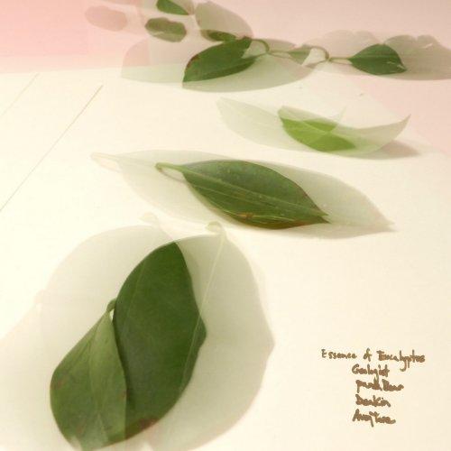 Avey Tare - Essence of Eucalyptus (2018)