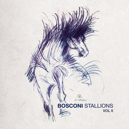 VA - Bosconi Stallions Vol.2 - 10 Years Of Bosconi Records (2018)