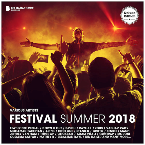 VA - Festival Summer 2018 (Deluxe Version) (2018)