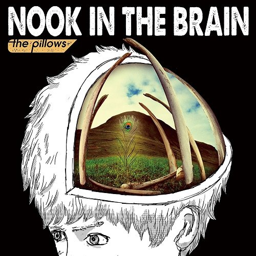 the pillows - NOOK IN THE BRAIN (2017)